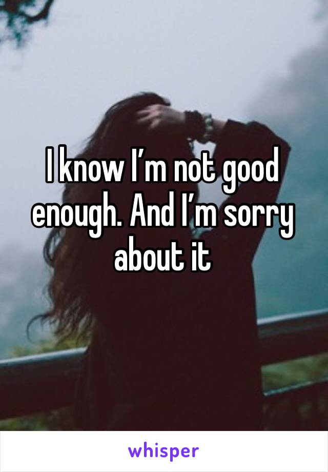 I know I'm not good enough. And I'm sorry about it