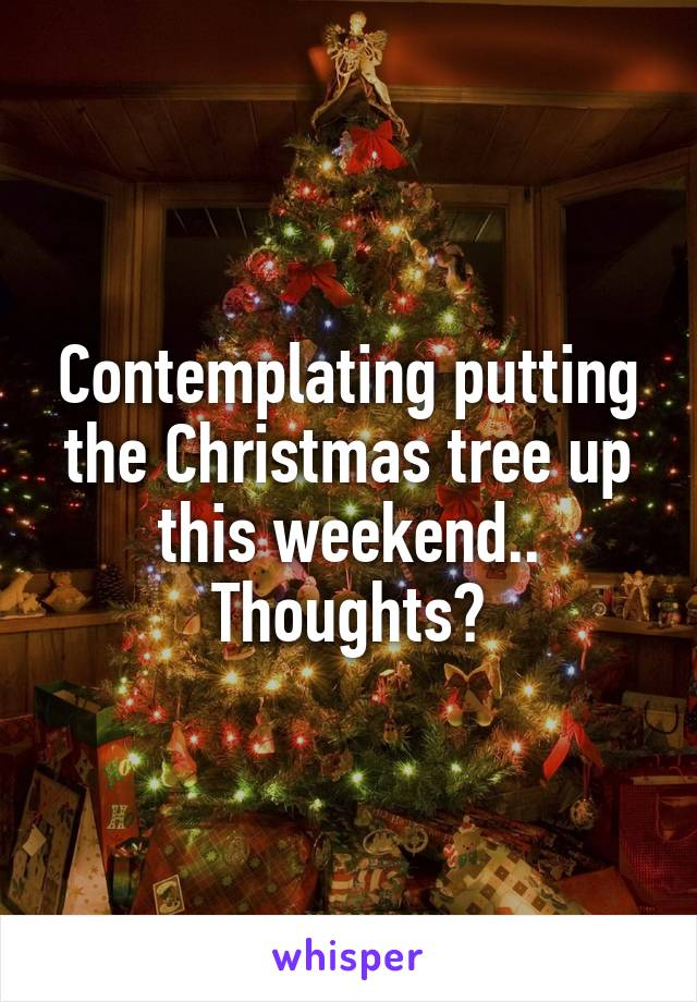 Contemplating putting the Christmas tree up this weekend.. Thoughts?