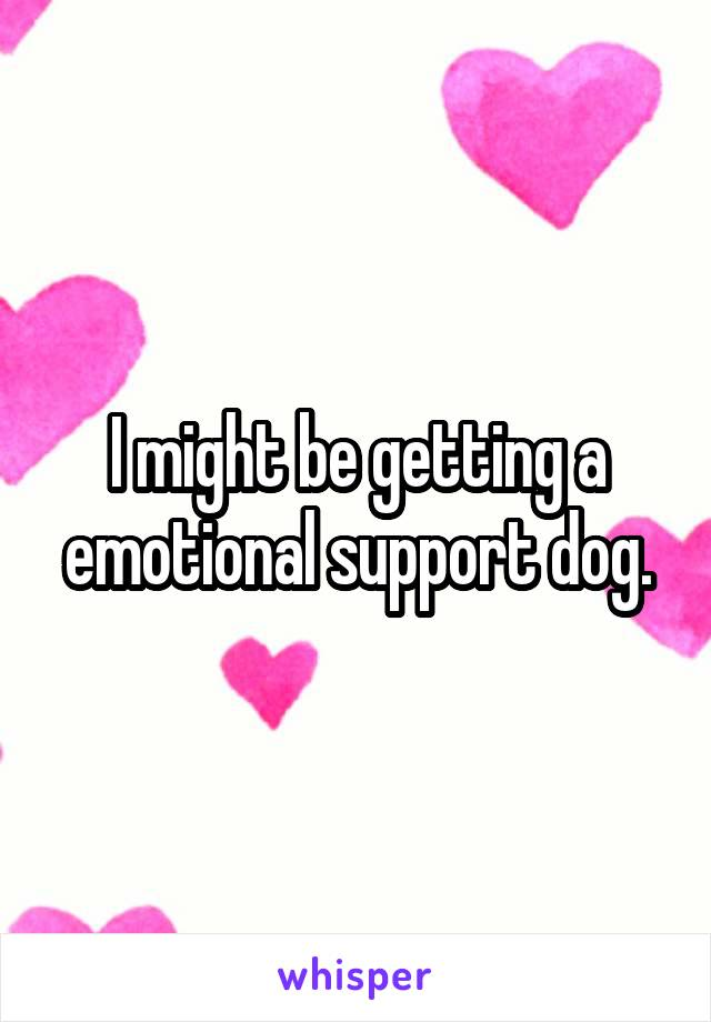 I might be getting a emotional support dog.