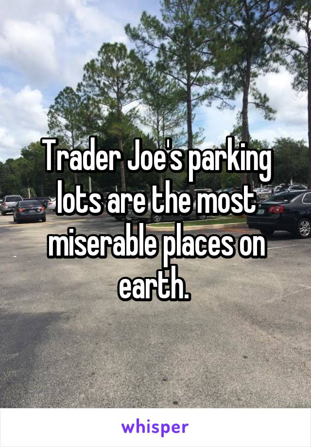 Trader Joe's parking lots are the most miserable places on earth.