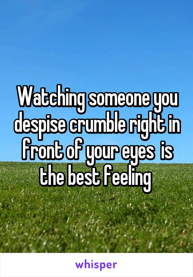 Watching someone you despise crumble right in front of your eyes  is the best feeling