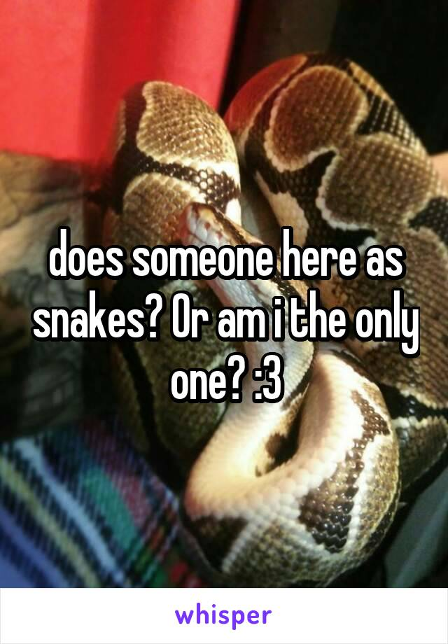 does someone here as snakes? Or am i the only one? :3