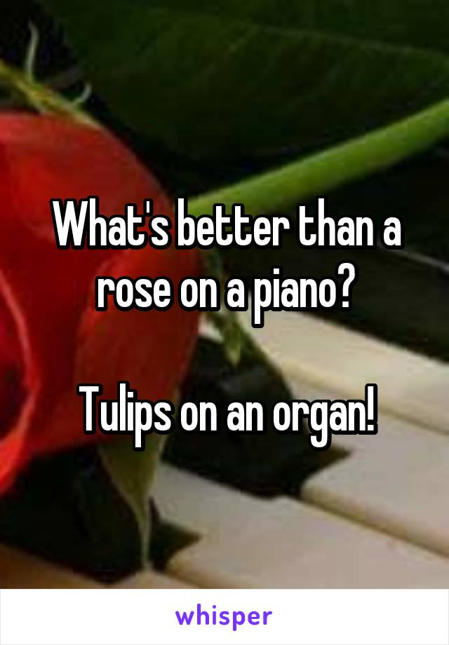 What's better than a rose on a piano?  Tulips on an organ!