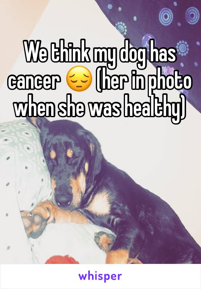 We think my dog has cancer 😔 (her in photo when she was healthy)