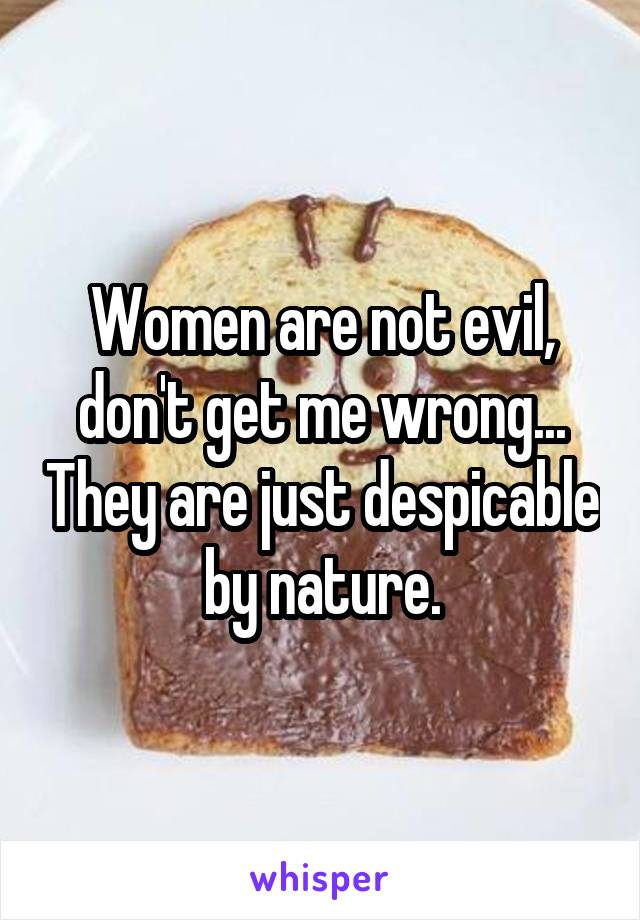 Women are not evil, don't get me wrong... They are just despicable by nature.