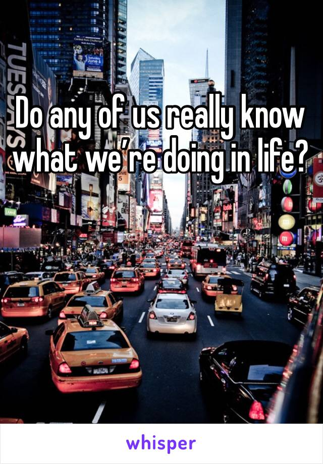 Do any of us really know what we're doing in life?