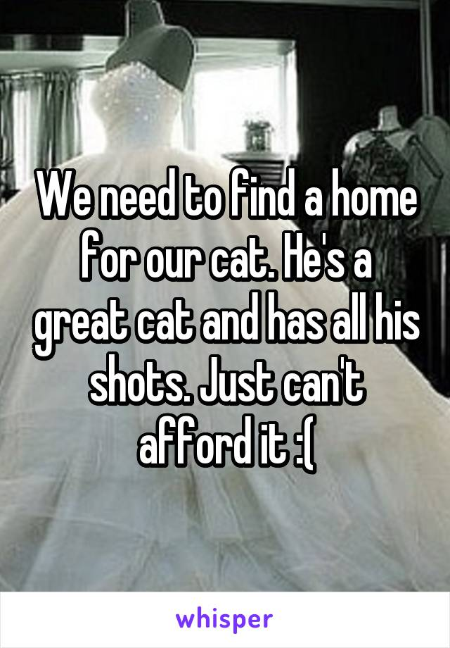 We need to find a home for our cat. He's a great cat and has all his shots. Just can't afford it :(