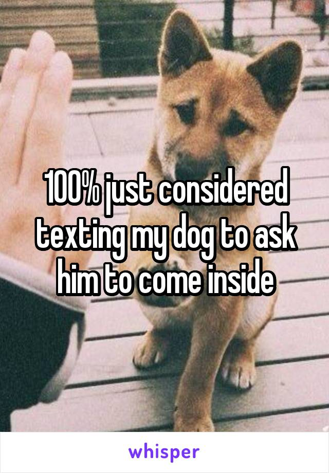 100% just considered texting my dog to ask him to come inside
