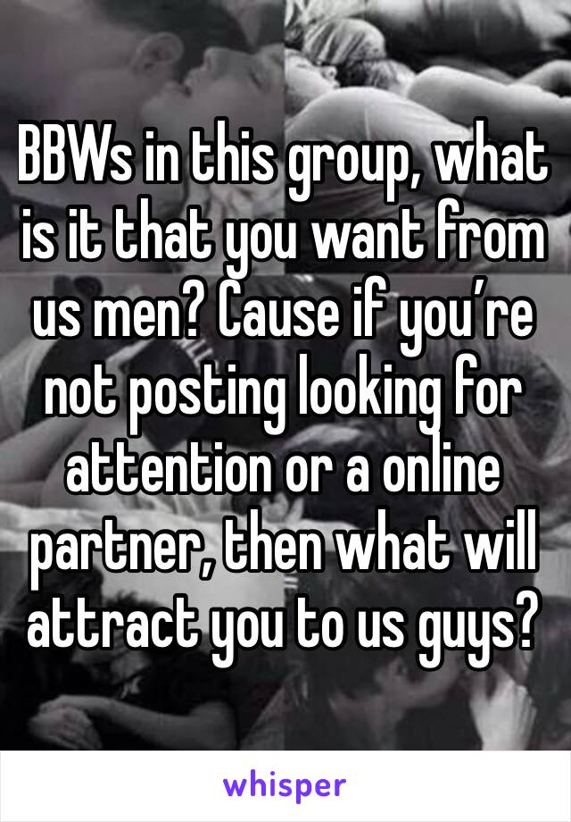 BBWs in this group, what is it that you want from us men? Cause if you're not posting looking for attention or a online partner, then what will attract you to us guys?