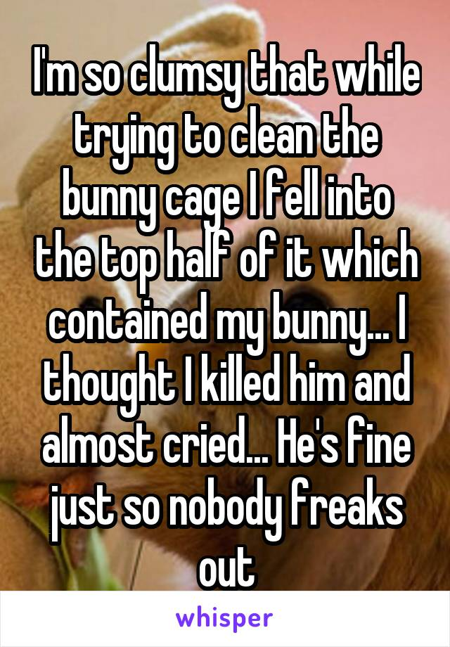 I'm so clumsy that while trying to clean the bunny cage I fell into the top half of it which contained my bunny... I thought I killed him and almost cried... He's fine just so nobody freaks out