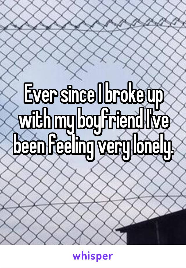 Ever since I broke up with my boyfriend I've been feeling very lonely.