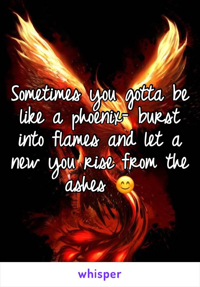 Sometimes you gotta be like a phoenix- burst into flames and let a new you rise from the ashes 😊