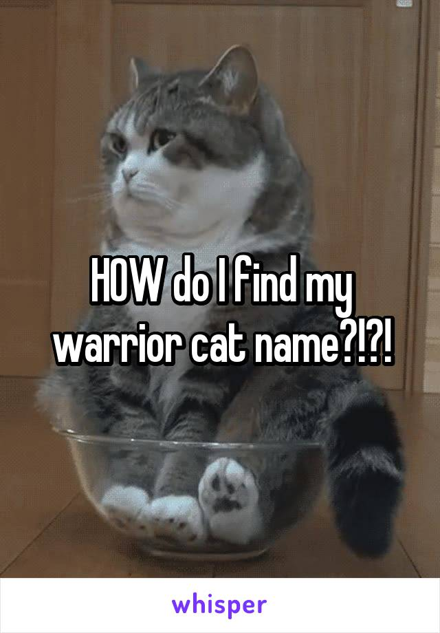 HOW do I find my warrior cat name?!?!