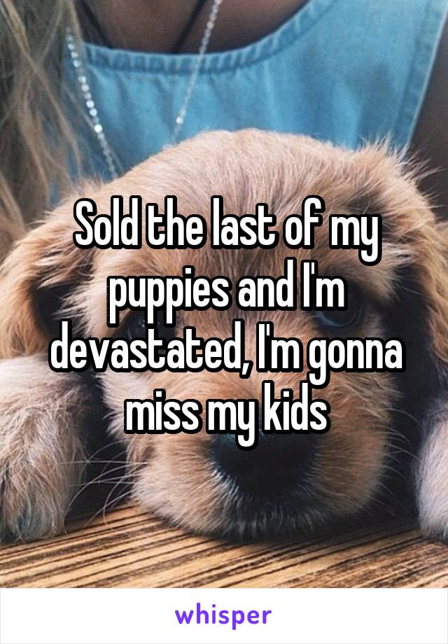 Sold the last of my puppies and I'm devastated, I'm gonna miss my kids