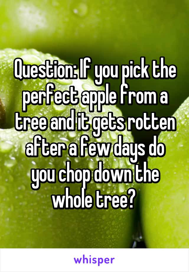 Question: If you pick the perfect apple from a tree and it gets rotten after a few days do you chop down the whole tree?