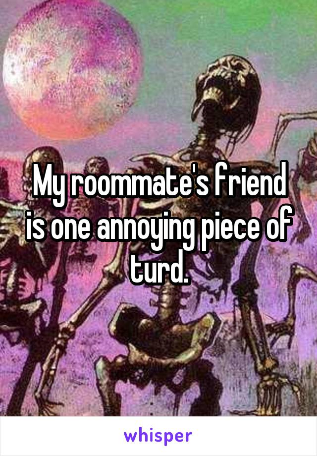 My roommate's friend is one annoying piece of turd.