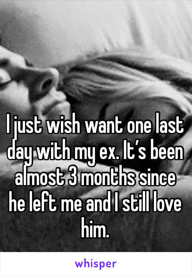 I just wish want one last day with my ex. It's been almost 3 months since he left me and I still love him.