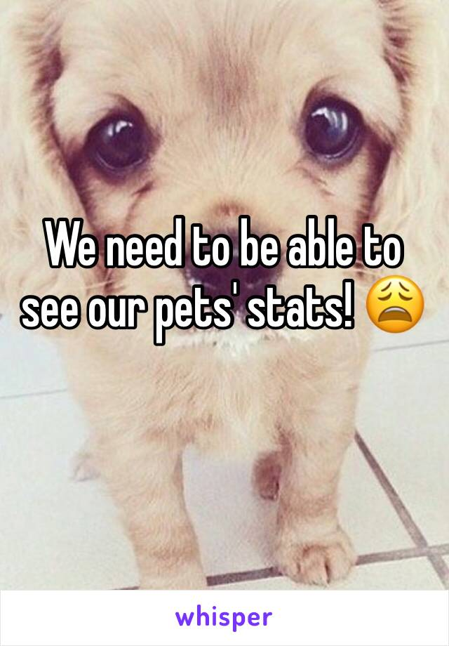 We need to be able to see our pets' stats! 😩