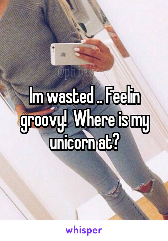 Im wasted .. Feelin groovy!  Where is my unicorn at?