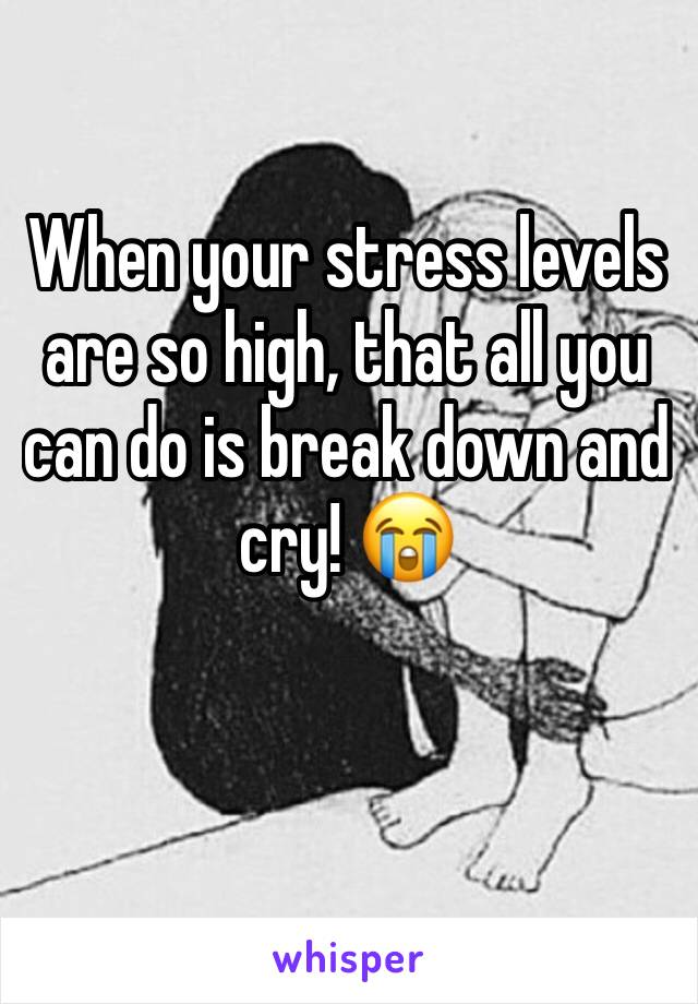 When your stress levels are so high, that all you can do is break down and cry! 😭