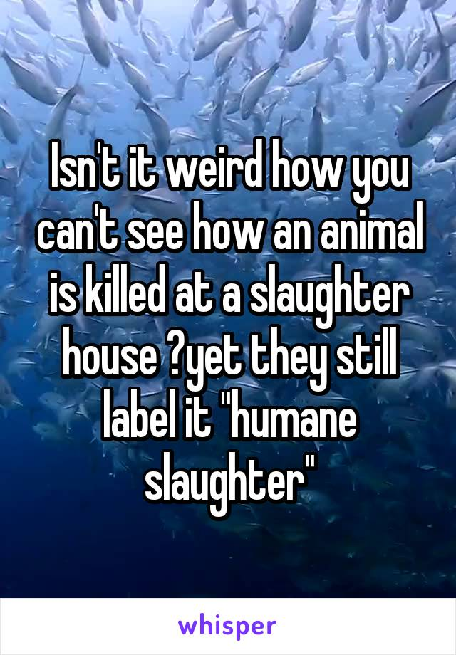 """Isn't it weird how you can't see how an animal is killed at a slaughter house ?yet they still label it """"humane slaughter"""""""