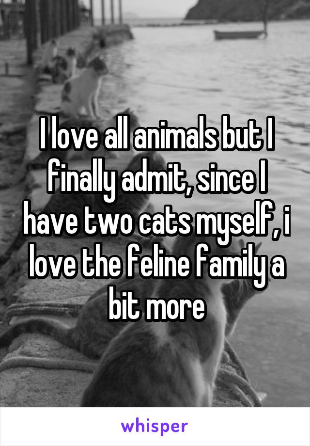 I love all animals but I finally admit, since I have two cats myself, i love the feline family a bit more