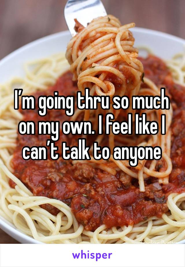 I'm going thru so much on my own. I feel like I can't talk to anyone