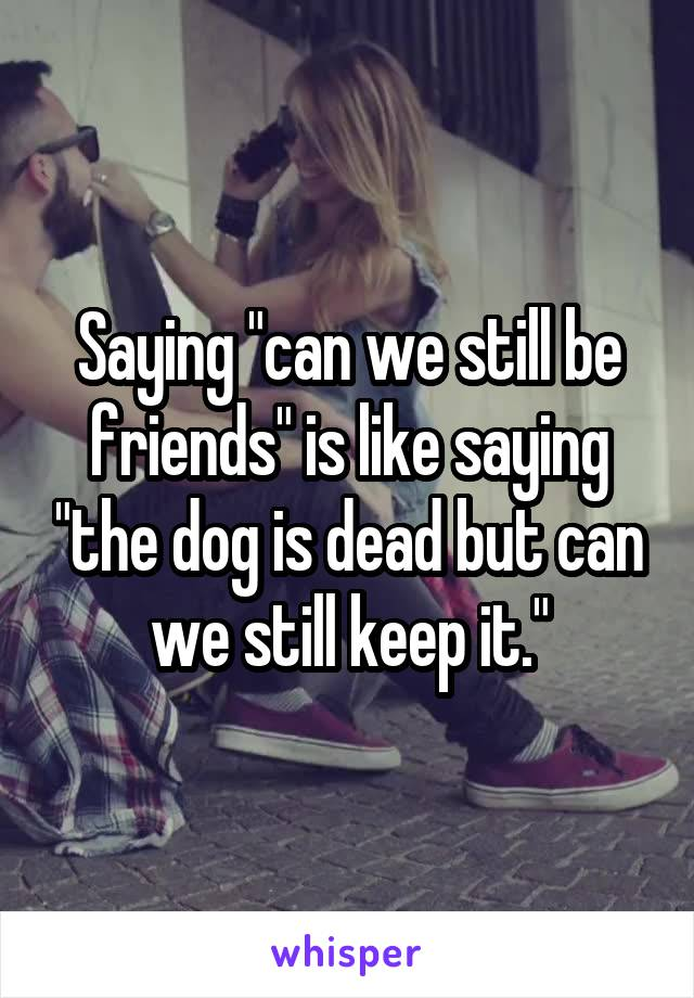"""Saying """"can we still be friends"""" is like saying """"the dog is dead but can we still keep it."""""""