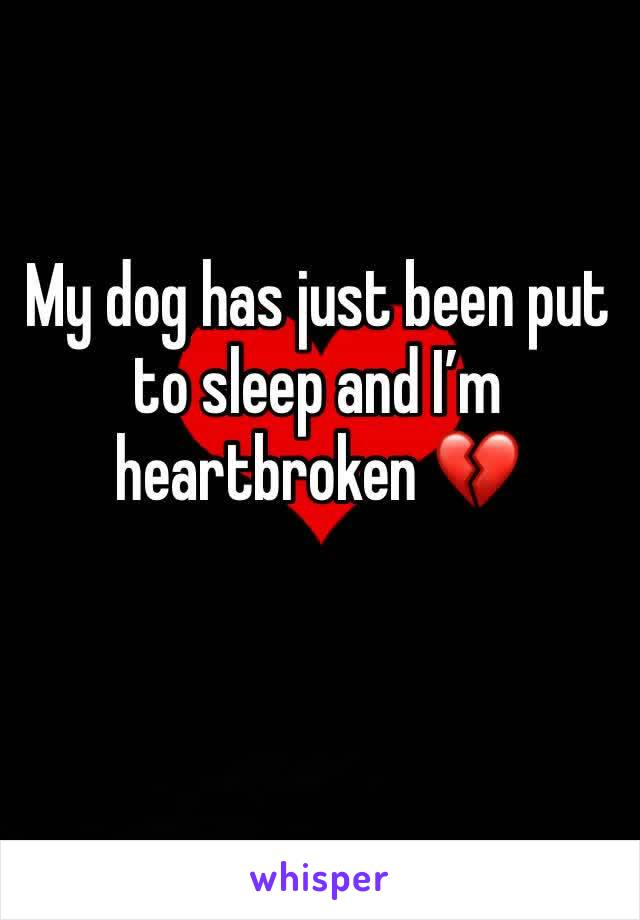 My dog has just been put to sleep and I'm heartbroken 💔