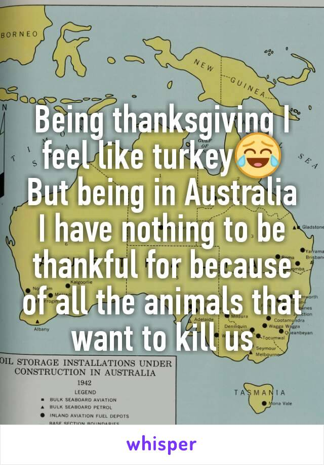 Being thanksgiving I feel like turkey😂 But being in Australia I have nothing to be thankful for because of all the animals that want to kill us