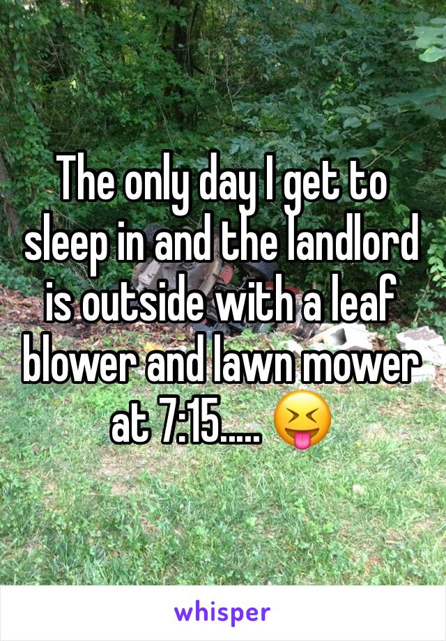 The only day I get to sleep in and the landlord is outside with a leaf blower and lawn mower at 7:15..... 😝