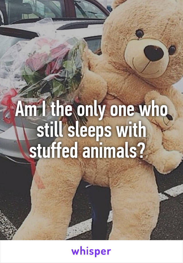 Am I the only one who still sleeps with stuffed animals?
