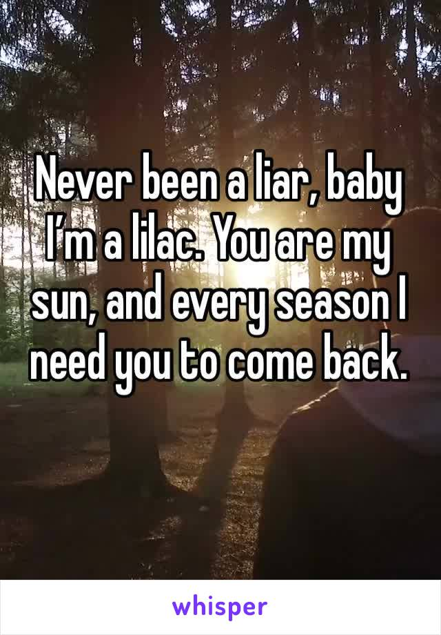 Never been a liar, baby I'm a lilac. You are my sun, and every season I need you to come back.