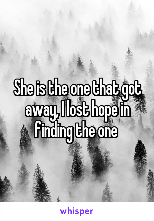 She is the one that got away, I lost hope in finding the one