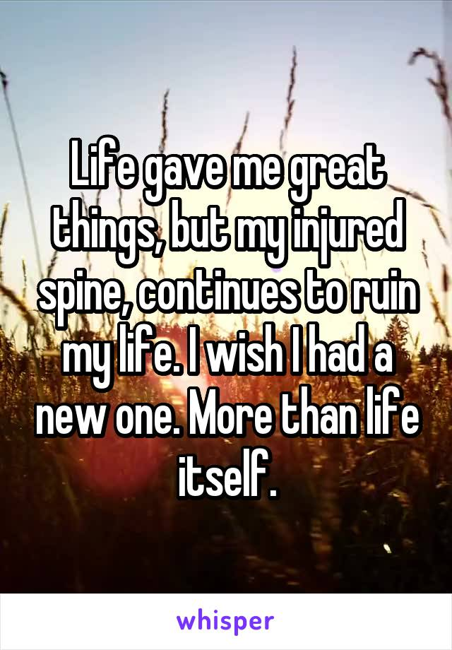 Life gave me great things, but my injured spine, continues to ruin my life. I wish I had a new one. More than life itself.
