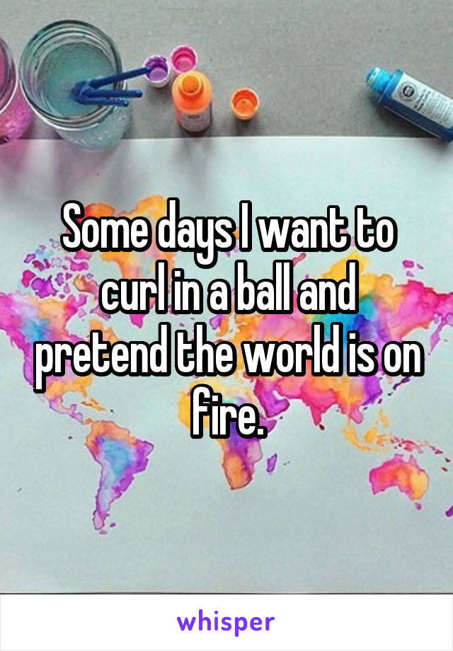 Some days I want to curl in a ball and pretend the world is on fire.
