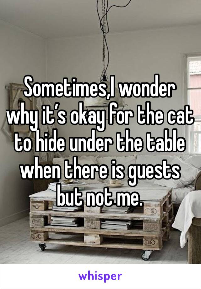 Sometimes,I wonder why it's okay for the cat to hide under the table when there is guests but not me.