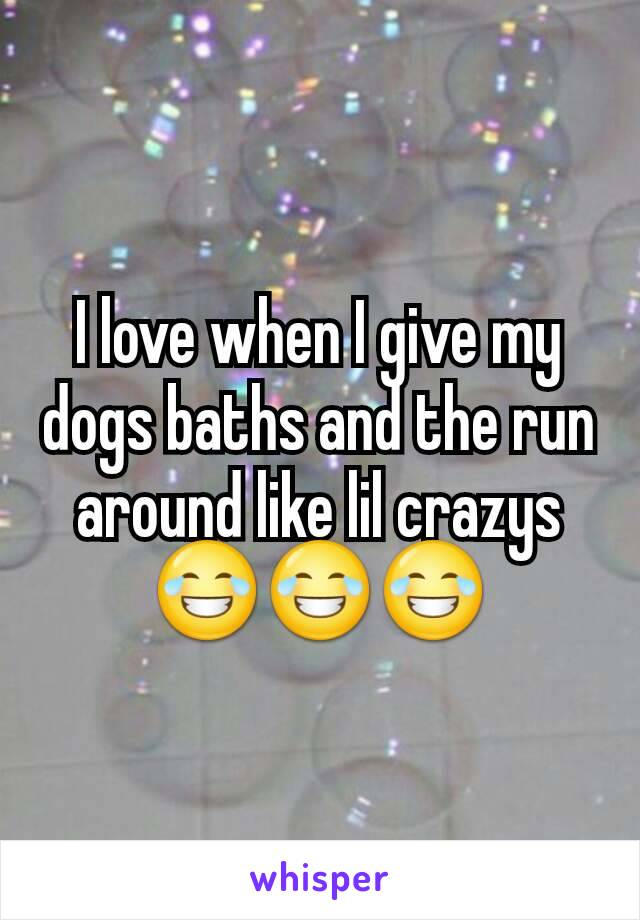 I love when I give my dogs baths and the run around like lil crazys 😂😂😂