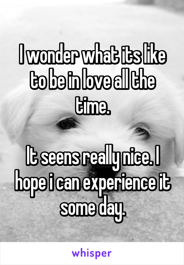 I wonder what its like to be in love all the time.  It seens really nice. I hope i can experience it some day.