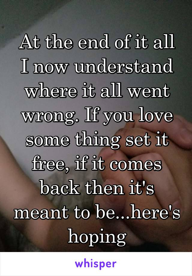 At the end of it all I now understand where it all went wrong. If you love some thing set it free, if it comes back then it's meant to be...here's hoping