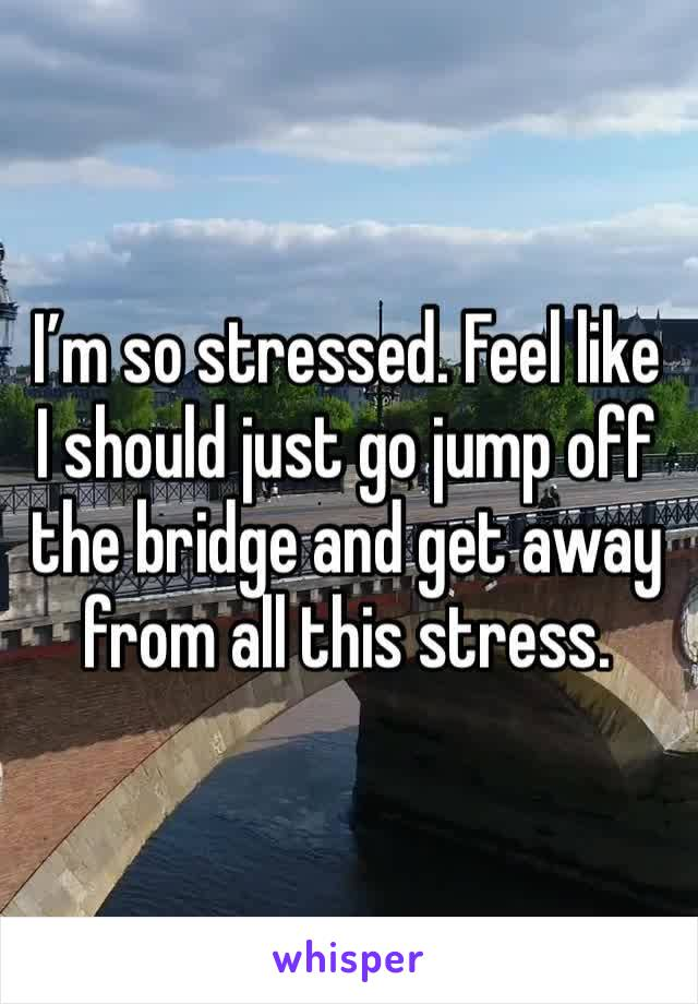 I'm so stressed. Feel like I should just go jump off the bridge and get away from all this stress.