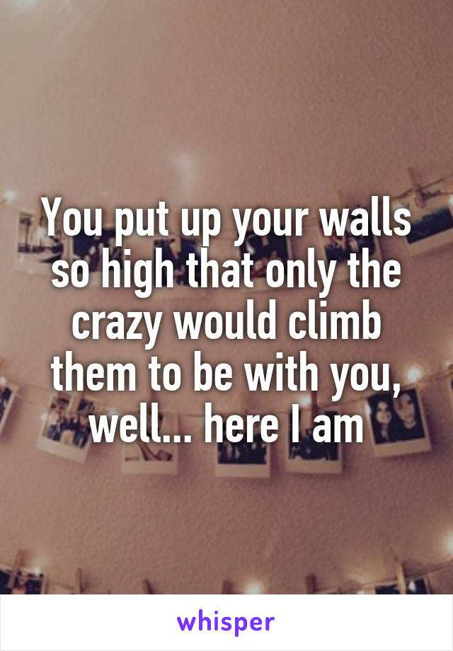 You put up your walls so high that only the crazy would climb them to be with you, well... here I am