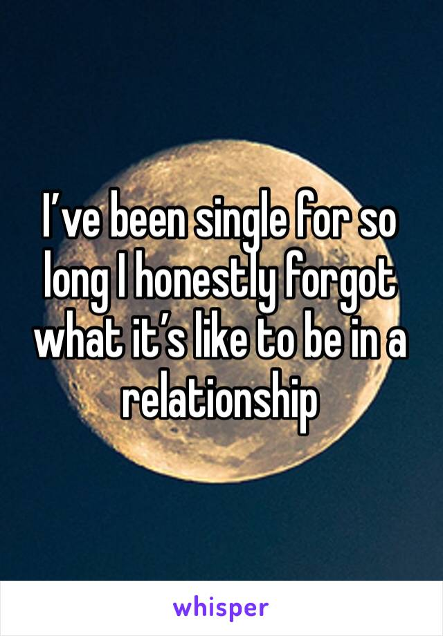 I've been single for so long I honestly forgot what it's like to be in a relationship