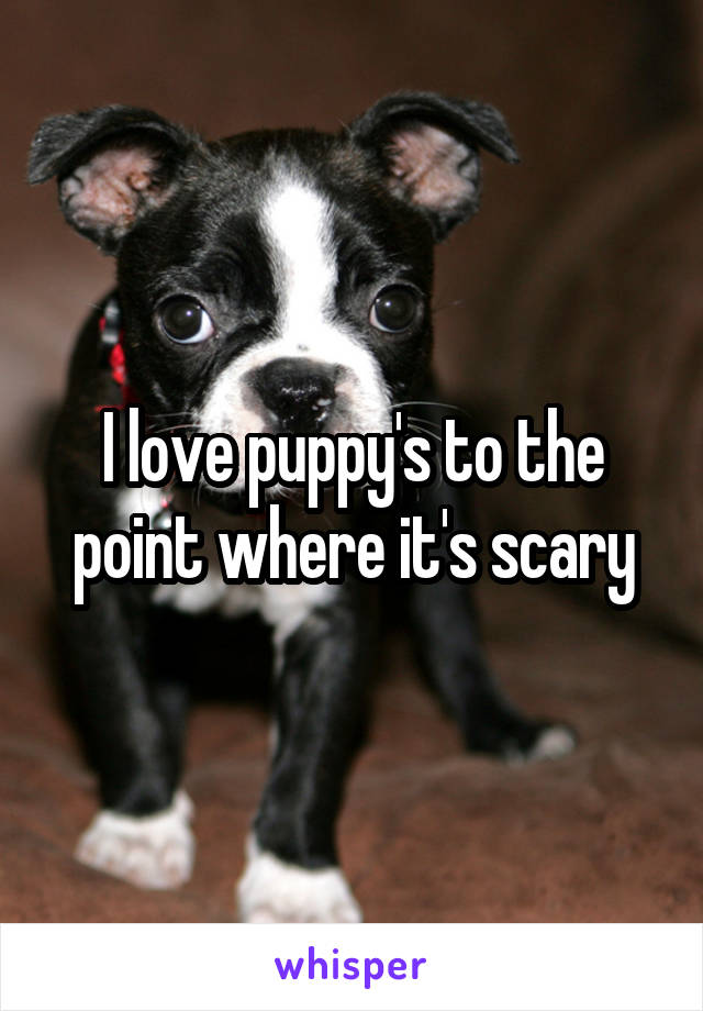 I love puppy's to the point where it's scary