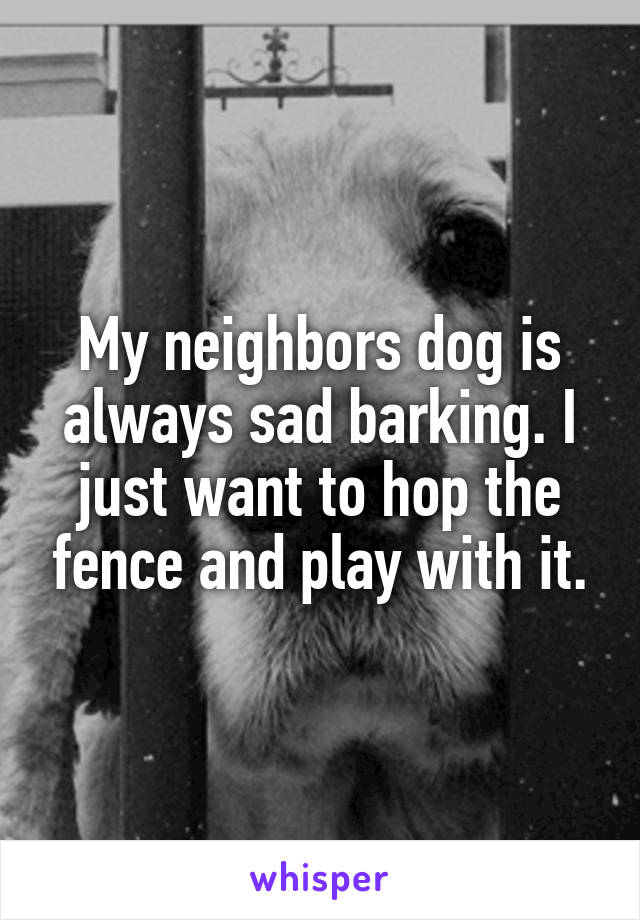 My neighbors dog is always sad barking. I just want to hop the fence and play with it.
