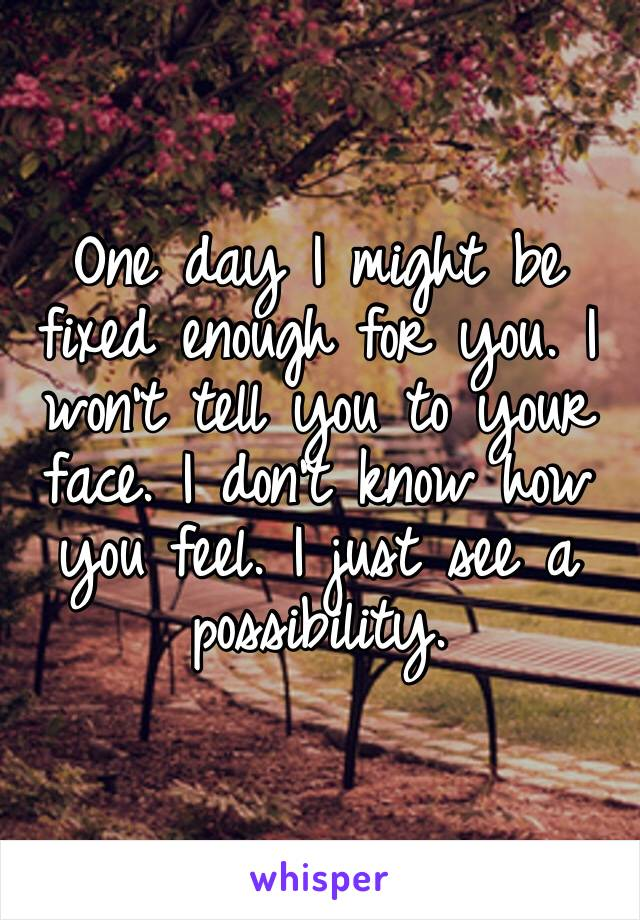 One day I might be fixed enough for you. I won't tell you to your face. I don't know how you feel. I just see a possibility.