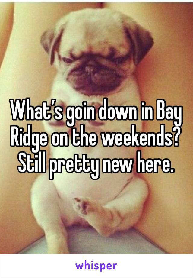 What's goin down in Bay Ridge on the weekends? Still pretty new here.