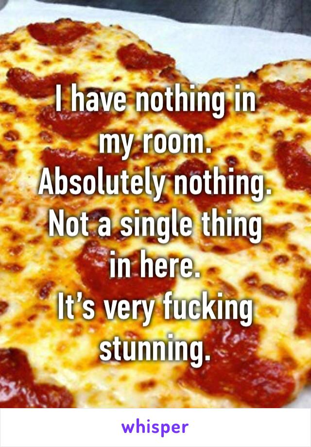 I have nothing in my room. Absolutely nothing. Not a single thing in here. It's very fuсking stunning.
