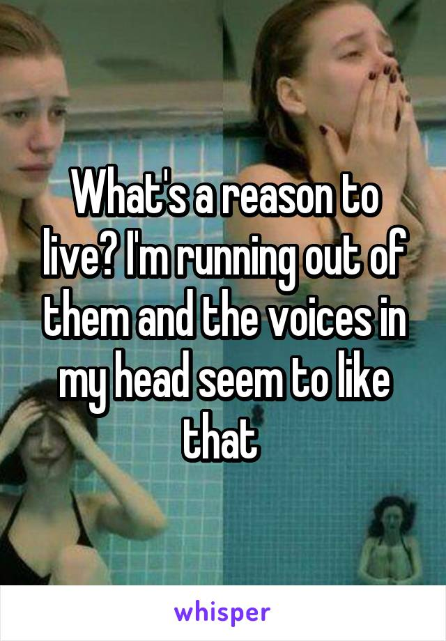 What's a reason to live? I'm running out of them and the voices in my head seem to like that