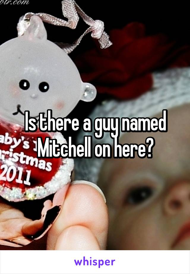Is there a guy named Mitchell on here?